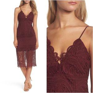 Bardot Versailles Wine Red Lace Dress